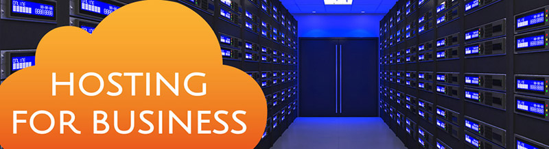 digita1-hosting-business